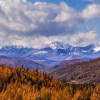 Осень в горах Алтая :: Галина Шепелева