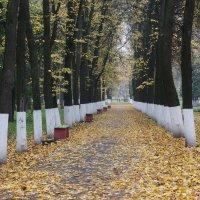 Опустевший парк. :: Светлана Исаева