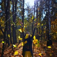 осень в лесу :: Василий Алехин