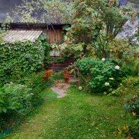 старый сад :: Валерий Коноплев