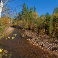 Малые реки России. Солонянка :: Анатолий Иргл
