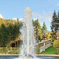 Первый Менажерный фонтан :: Владимир Гилясев
