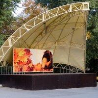 Осень в парке... :: Тамара (st.tamara)