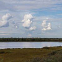 Облака - белогривые лошадки.... :: Дмитрий Сиялов