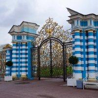 Исторические ворота :: Ирина Шурлапова