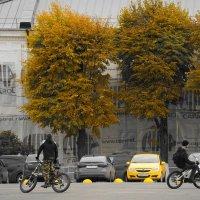 осенние велосипедисты :: Дмитрий Потапов