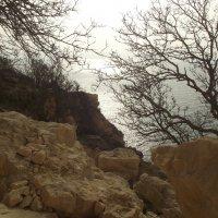 пляж Маяк-2 Севастополь :: Роза Бара
