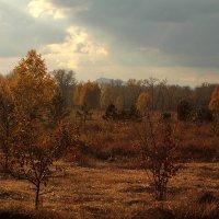 Девятое октября :: Екатерина Торганская