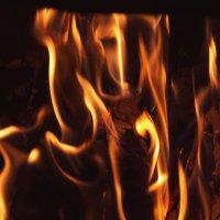 Осенний огонь :: Aнна Зарубина