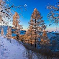 На горы зимние, взор Ваш, пусть неутомимым будет 10 :: Сергей Жуков