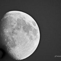 луна :: олег