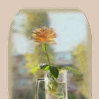 Акварели осень пишет, отмывая краски лета... :: Людмила Богданова (Скачко)