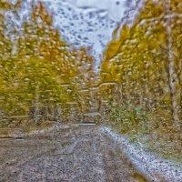 Последний дождь. вспоминая Jacob Abraham Camille Pissarro. :: Дмитрий Карышев