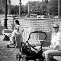 Из альбома С фотоаппаратом по городу :: Владимир Шехтер