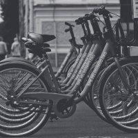 Правильный транспорт :: Вадим Куликов