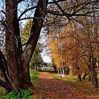 Осень :: Юрий Владимирович 34