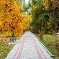 Осенний парк :: Елена Кознова