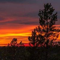 Закат в Западной Сибири :: Дмитрий Сиялов