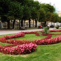 Кисловодск. Орнамент из цветов на Курортном Бульваре :: татьяна