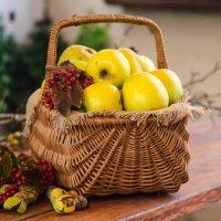 корзина с яблоками. :: ния