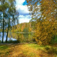 Осень на Смоленщине (9) :: Милешкин Владимир Алексеевич