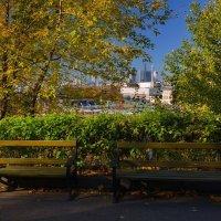 Осень с удобствами :: Александр