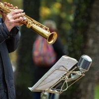 Музыка в осеннем парке :: Константин Косов