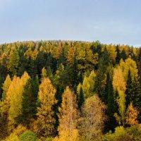 Просто осень :: Вячеслав Овчинников