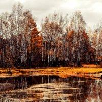 осень, грусть :: Инна