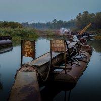 Стой! 6000 В :: Artem Zelenyuk