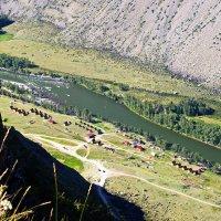 С высоты птичьего полёта :: val-isaew2010 Валерий Исаев