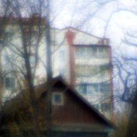 "Из альбома ""Монокль"" :: Владимир Шехтер"