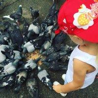 Девочка с голубями :: Наташа Федорова