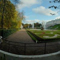 Нижний парк :: tipchik