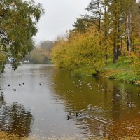 Осенний пейзаж :: Анастасия Смирнова