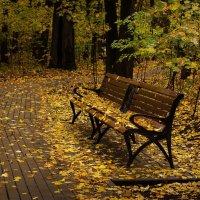 Опустевший парк :: Ирина Климова