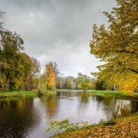 В Павловском парке :: Юрий Бутусов