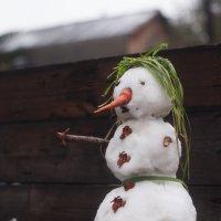 Октябрьский снеговик :: Вера Арасланова