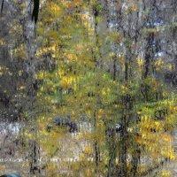 Под окошком осень... :: Юрий
