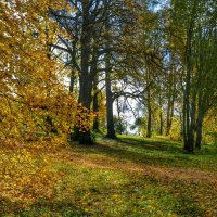 Осень на Смоленщине (12) :: Милешкин Владимир Алексеевич