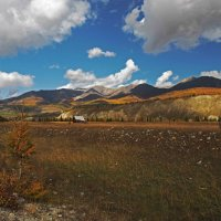 По дороге к истокам Иркута... :: Александр Попов