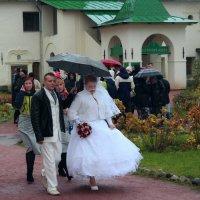 Дождь - к счастью.. :: Vladimir Semenchukov