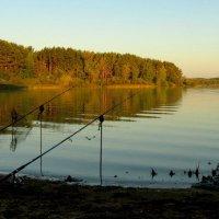 Рыбалка :: Михаил Цегалко