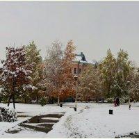 Первый снег. :: Владимир Михайлович Дадочкин