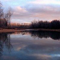 Серый день короче ночи, холодна в реке вода ... :: Евгений Юрков