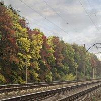 Осень :: Юлия Фалей