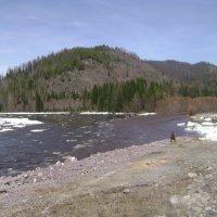 Река Ус у Усинского тракта :: Марина Домосилецкая