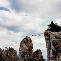Ай-Петри (мост) :: Anna Kononets