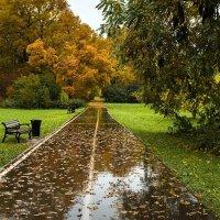 По осенним дорожкам в старом парке :: Ирина Климова