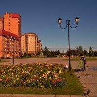 парк 300летия гор. Ломоносов :: Валентина Папилова